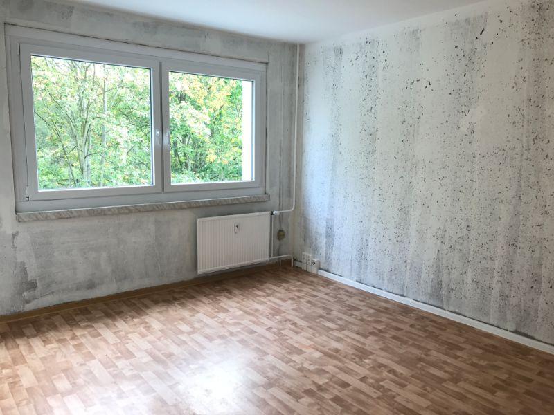 An der Kleinbahn 11, Freital-Hainsberg, Wohnzimmer